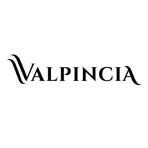 valpincia-vinos