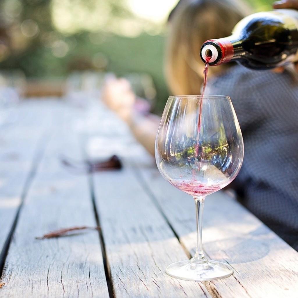 vinos y viñedos de las Islas Canarias